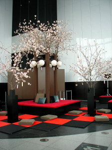 Sakura0703001