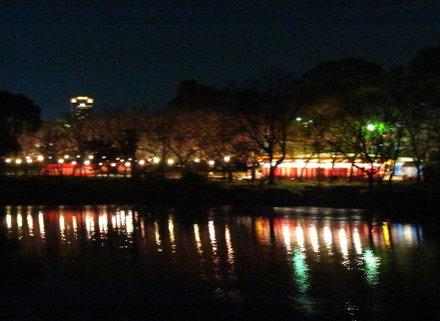 Sakura0703004